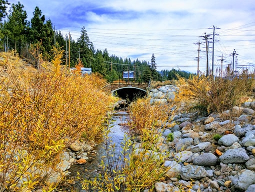 sage_land_surveying_sls_survey_surveyor_construction_planning_consulting_parcel_easement_elevation_boundary_topographic_property_boundary_mapping_staking_scanning_truckee_tahoe_trout_creek_restoration